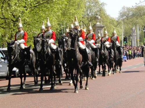 Horseguards London Changing Of The Guard Horses