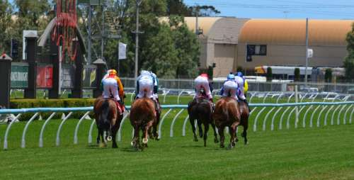 Horses Racing Jockey Sport Rider Track