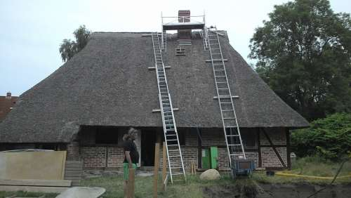 House Reed Roof Renovation Rural Roof Plön