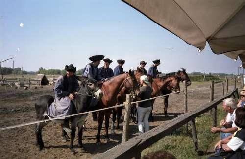 Hungary Horses Puszta Tourism Hats