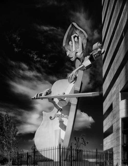 Il Virtuoso Sculpture Black And White Violin Art