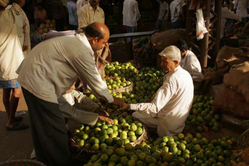 India Bombay Market Sell Fruits Citrus Fruits