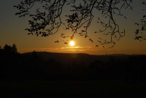Indian Summer Sunset Backlighting Evening Rest