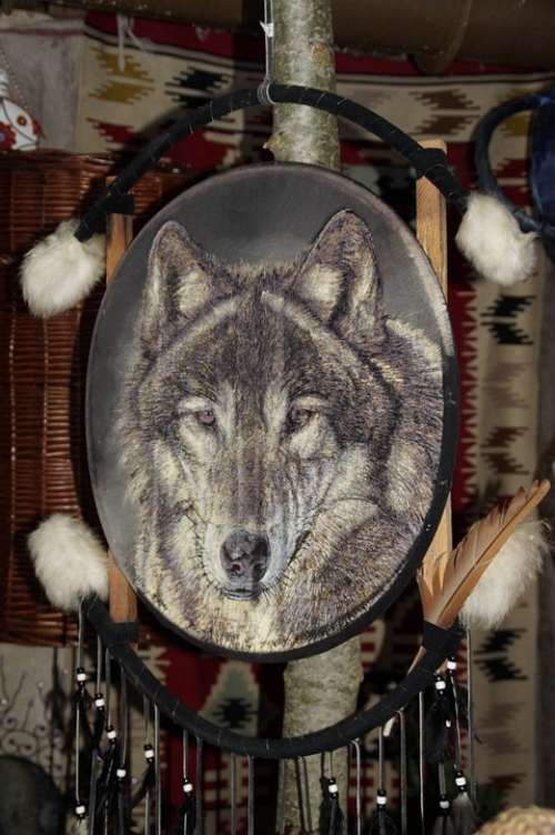 Indians Dream Catcher Wolf Indian Culture