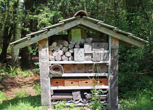 Insect Hotel Nesting Help Wild Bees Insect
