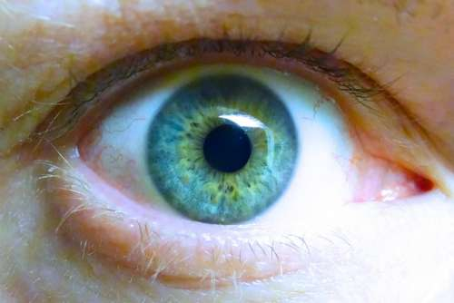 Iris Eye Blue Eye Eyelashes Eyeball Lid Watch