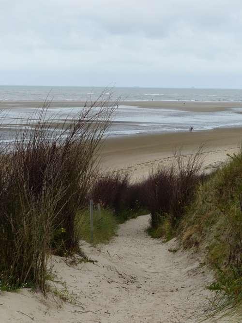 Island East Frisia Coast Sea Breeze Beach Horizon