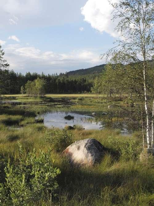 Island Sweden Lake Värmland