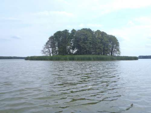 Island Lake Obra Poland Nature Water Tree
