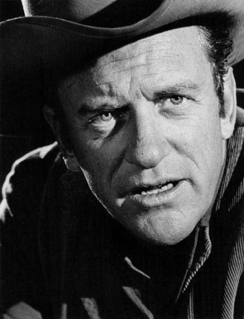 James Arness Actor Classic Television Series