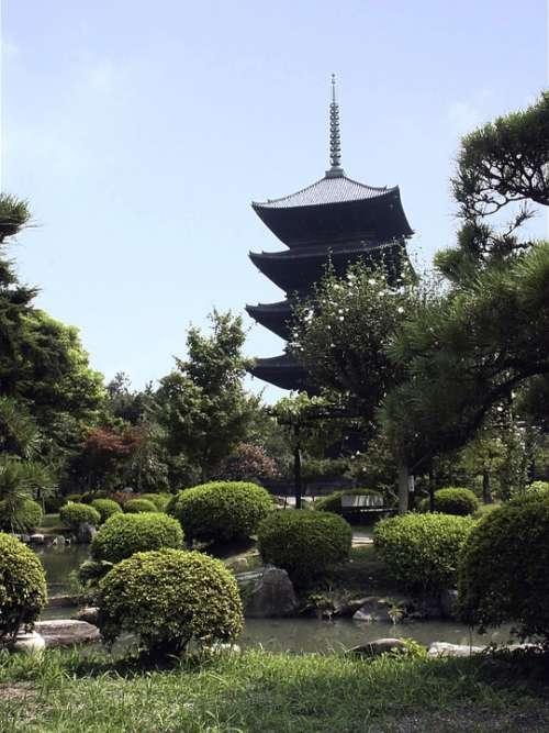 Japan Temple Wood Tradition Landscape Bushes
