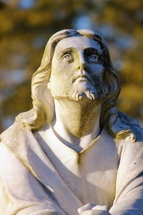 Jesus Religious Statue Male Looking Up Nature