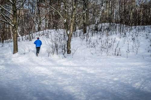 Jogging Winter Snow Tree Nature