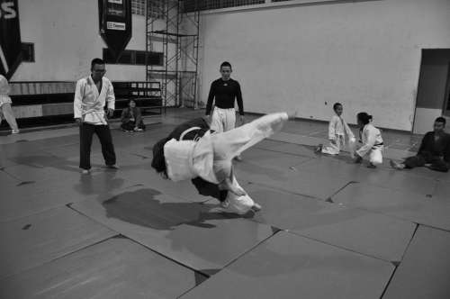 Judo Martial Arts Combat Throw Sport Fight