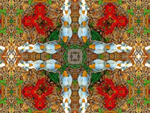 Kaleidoscope Design Ducks Pattern Style Color