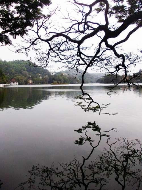 Kandy Lake Lake Kandy Sri Lanka Mawanella Ceylon