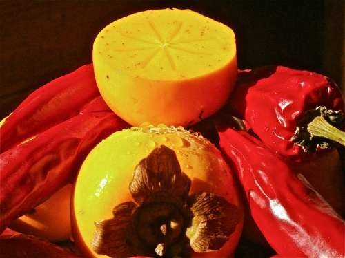 Khaki Diospyros Kaki Fruit 3Cmlong Persimmons
