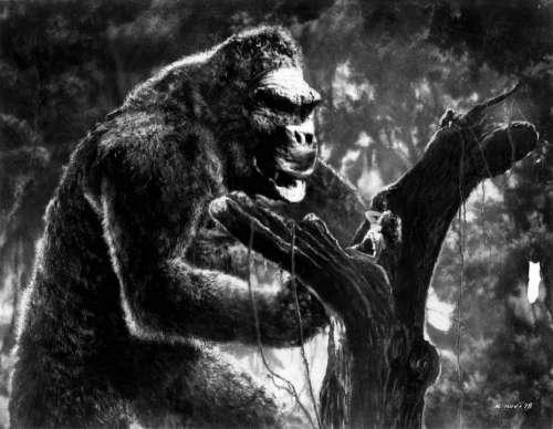 King Kong Giant Ape Monkey Gorilla Primate
