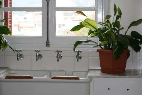 Kitchen Sink Cranes White Metal Green Potted Plant