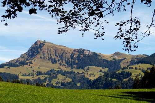 Kitzbüheler Horn Mountain Peak Tyrol Mountain