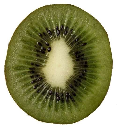 Kiwi Fruit Kiwi Fruit Vitamins Healthy Food Eat