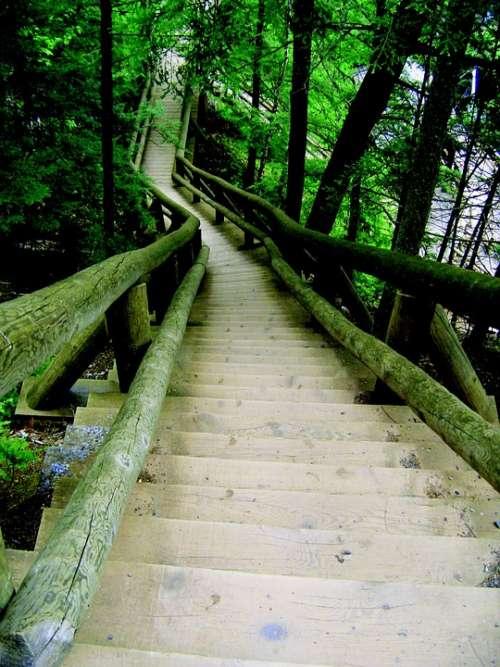 Ladder Truro Canada Nova Scotia Park