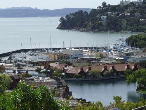 Lagoon Yacht Harbor Tiburon Tiburon California