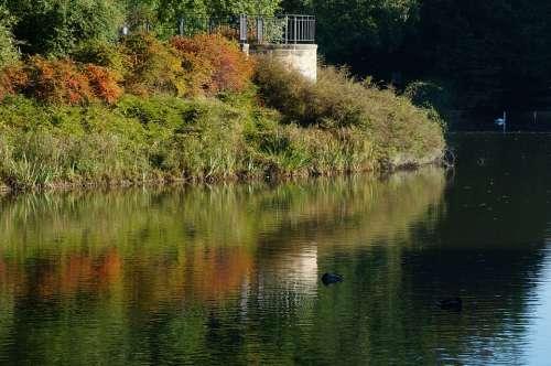 Lake Mirroring Autumn Water Colorful Mood