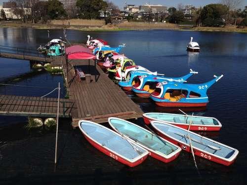 Lake Boat Landing Stage Kumamoto Japan Water