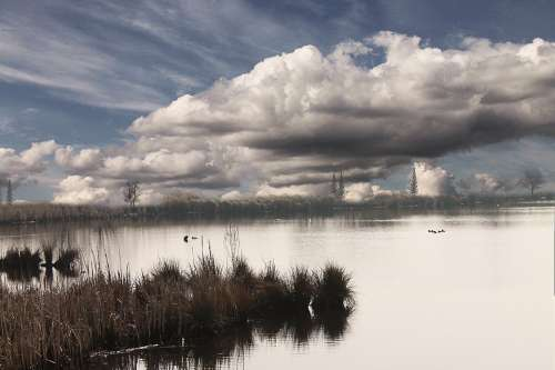 Lake Clouds Water Landscape Nature Trees