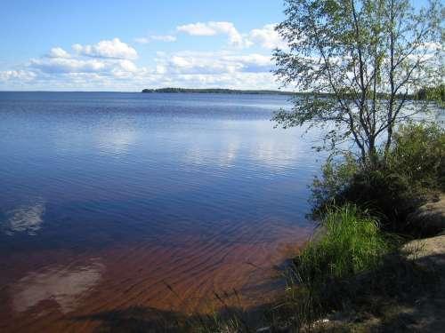 Lake Summer Finnish Summer Vacation Landscape