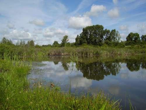 Lake Reeds Swamp