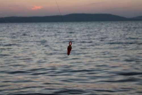 Lake Balaton Water Summer