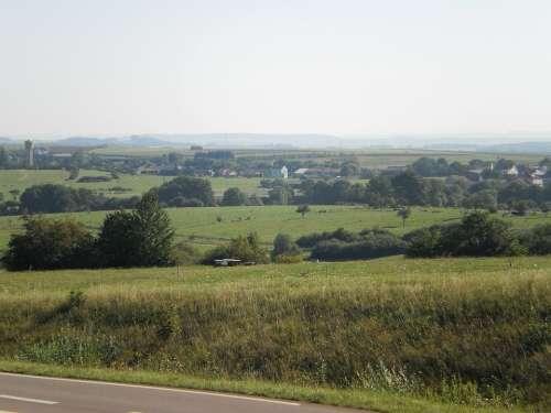 Landscape Moselle Field Mist