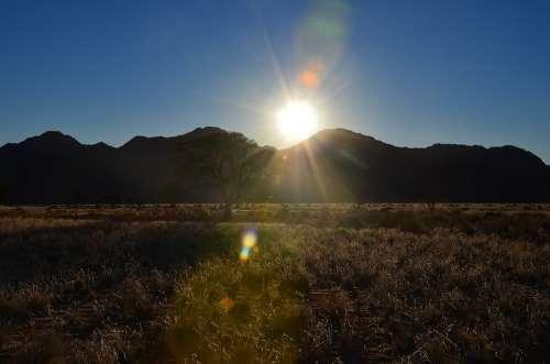 Landscape Sunset Nature Grass Sun Sky Rest