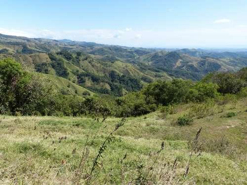 Landscape Costa Rica Central America Nature Tree