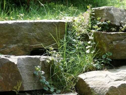 Landscape Nature Stones