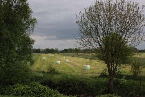 Landscape Hay Bales Nature Agriculture Harvest