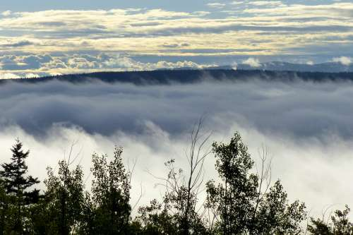 Landscape Fog Bank Clouds Sky Nature Fog Covered