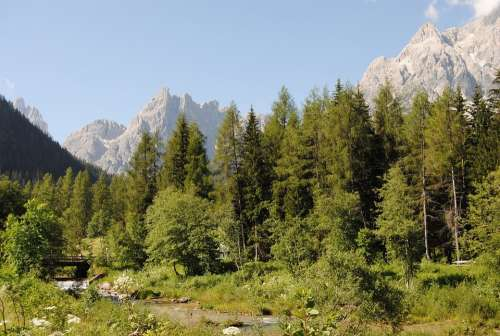 Landscape Dolomites Mountains Trees