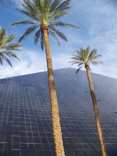 Las Vegas Usa Travel