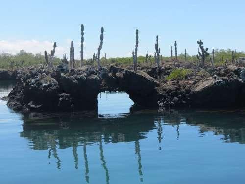 Lava Tunnel Galapagos Islands Ecuador