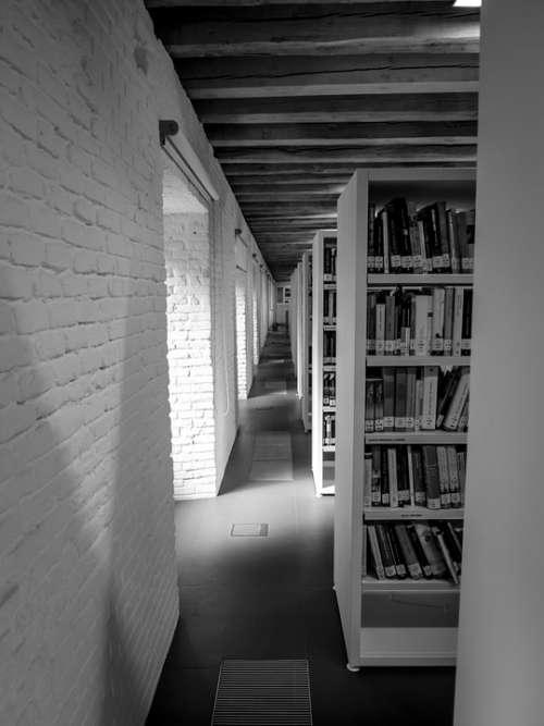 Library Books Shelves Light