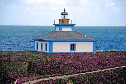 Lighthouse Island Sea Water Saltwater Ocean