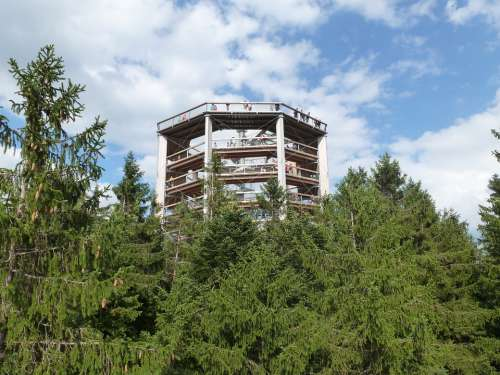 Lipno Lookout In The Trees