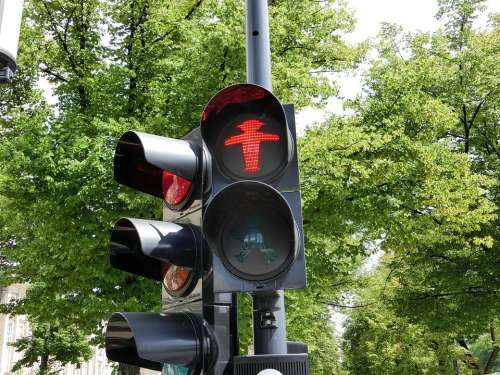 Little Green Man Males Red Traffic Lights Trees