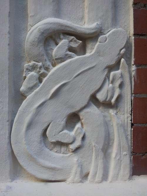 Lizard Stucco Wall Detail Facade Texture