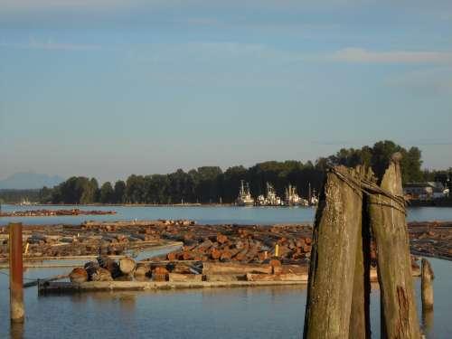 Logs Lumber River Logging Timber Logistics