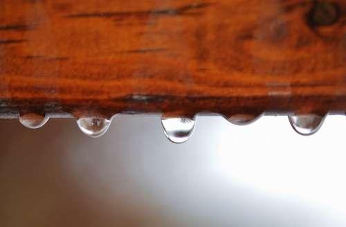 Macro Background Drop Water Drops Drop Of Water