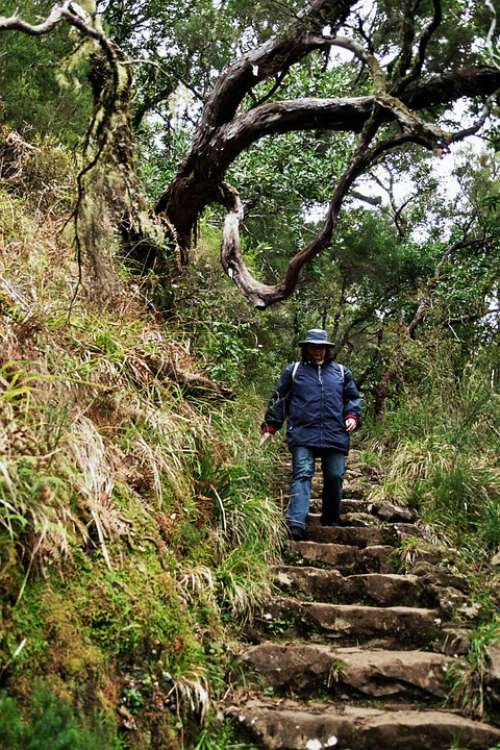 Madeira Highlands Mountains Summit Levada